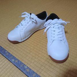 スポーツメーカーの安全靴が気になる。